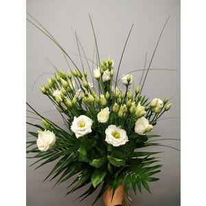 Bouquet de lisianthus blancs
